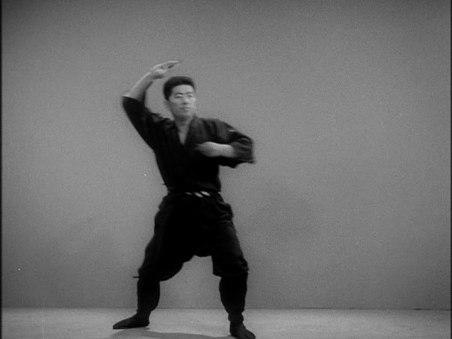 Hatsumi.shuriken.2
